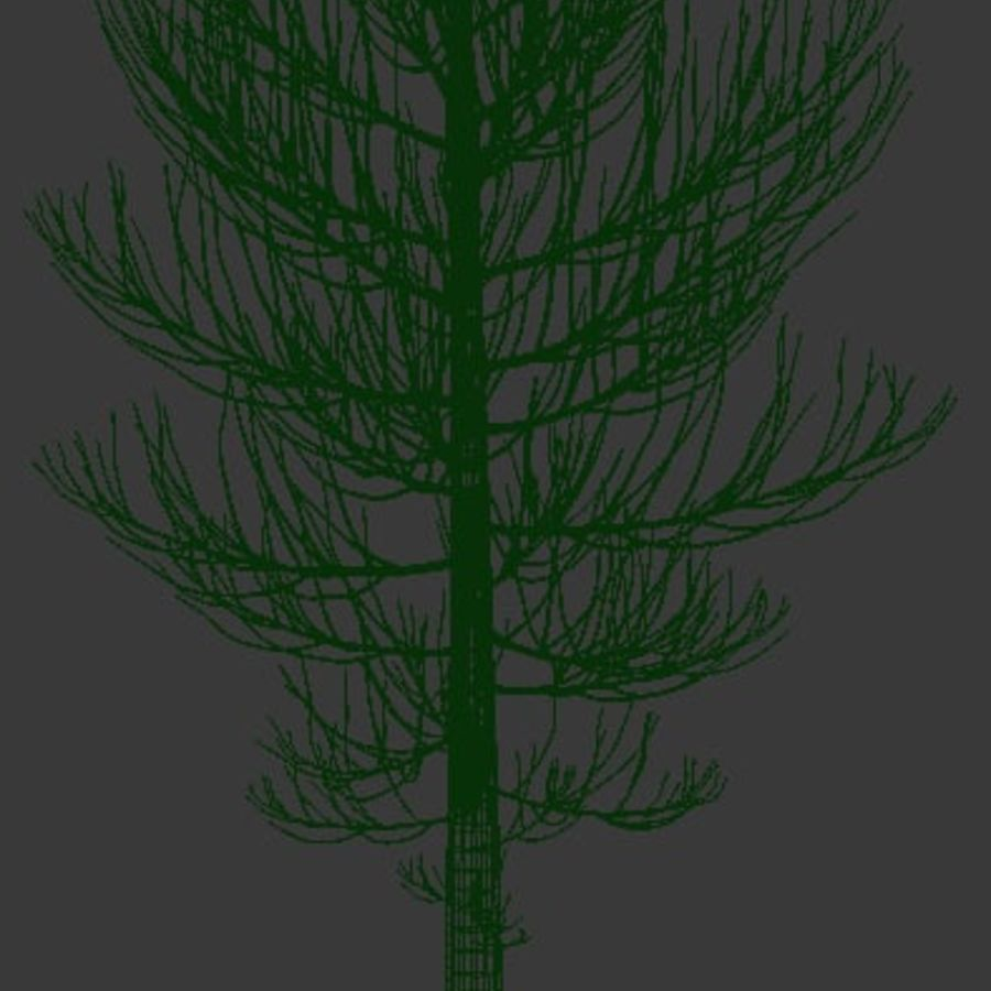 Wysokie drzewo royalty-free 3d model - Preview no. 5