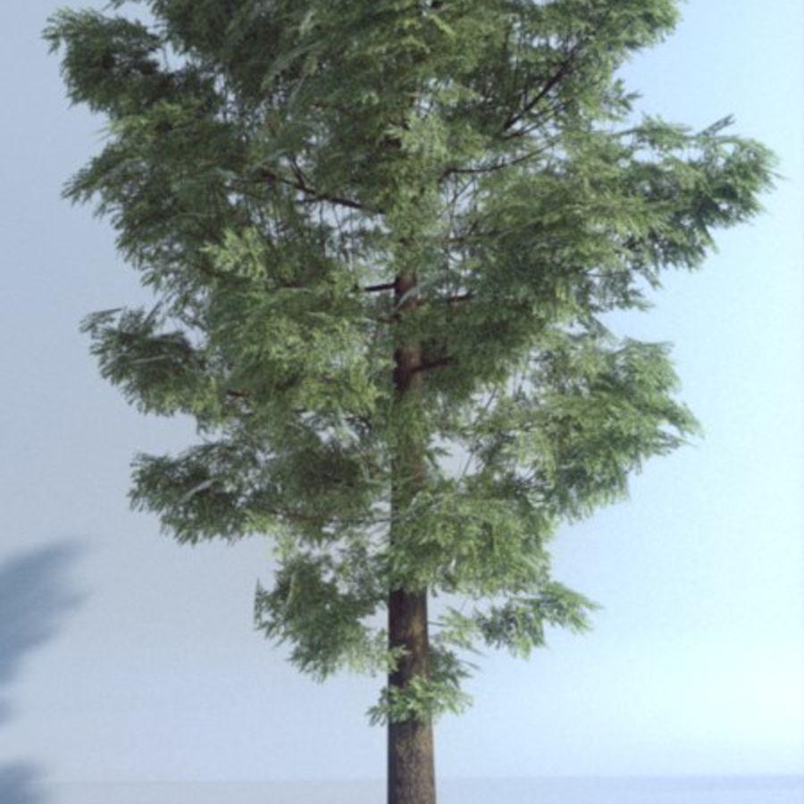 Wysokie drzewo royalty-free 3d model - Preview no. 1
