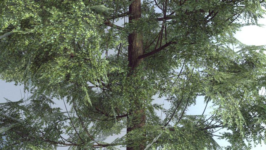 Wysokie drzewo royalty-free 3d model - Preview no. 2