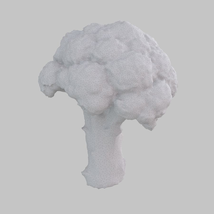 Broccoli royalty-free 3d model - Preview no. 8