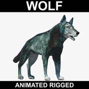 Wolf (Animerad Rigged) 3d model
