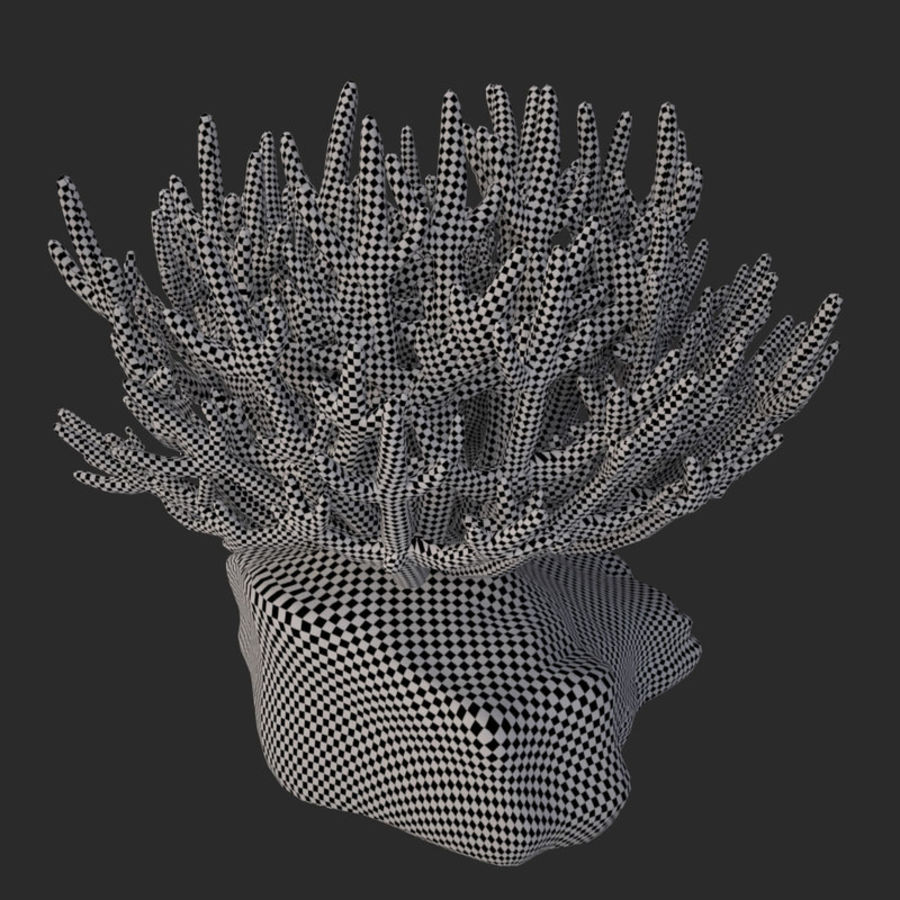 coral acropora_v2 royalty-free 3d model - Preview no. 15