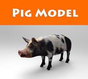 pig model 3d model