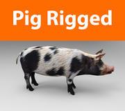 pig rigged(1) 3d model