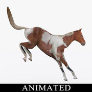 Horse Rigged Animated Jump 3d model