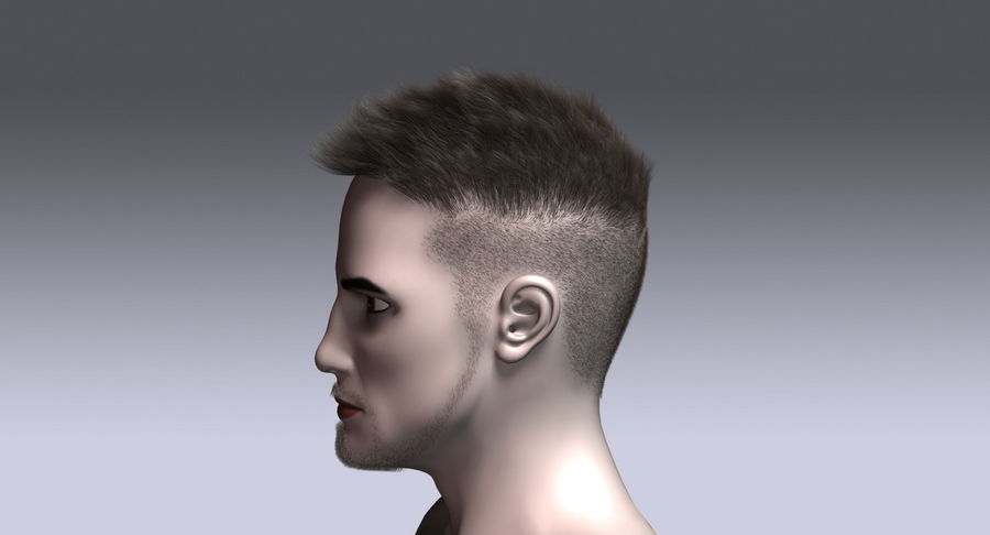 Virtual Hair 11 royalty-free 3d model - Preview no. 10
