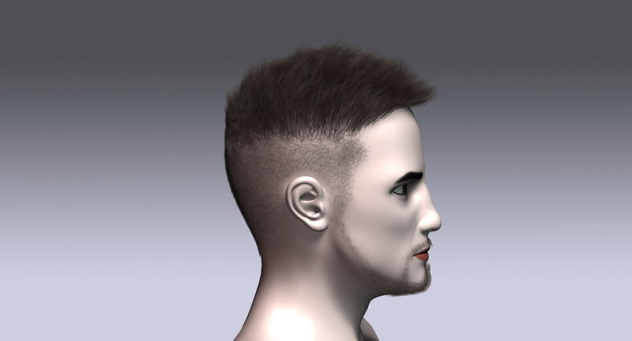 Virtual Hair 11 royalty-free 3d model - Preview no. 6