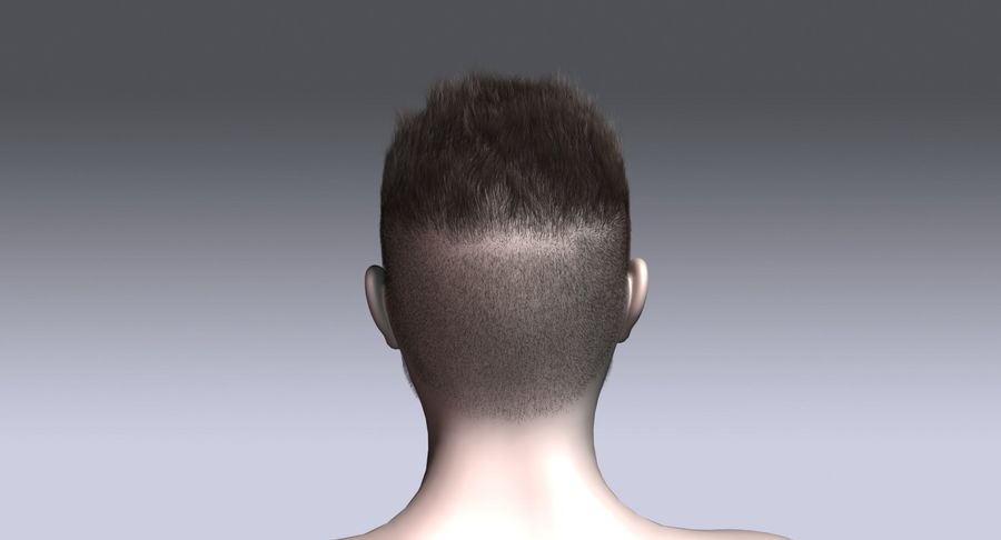 Virtual Hair 11 royalty-free 3d model - Preview no. 8