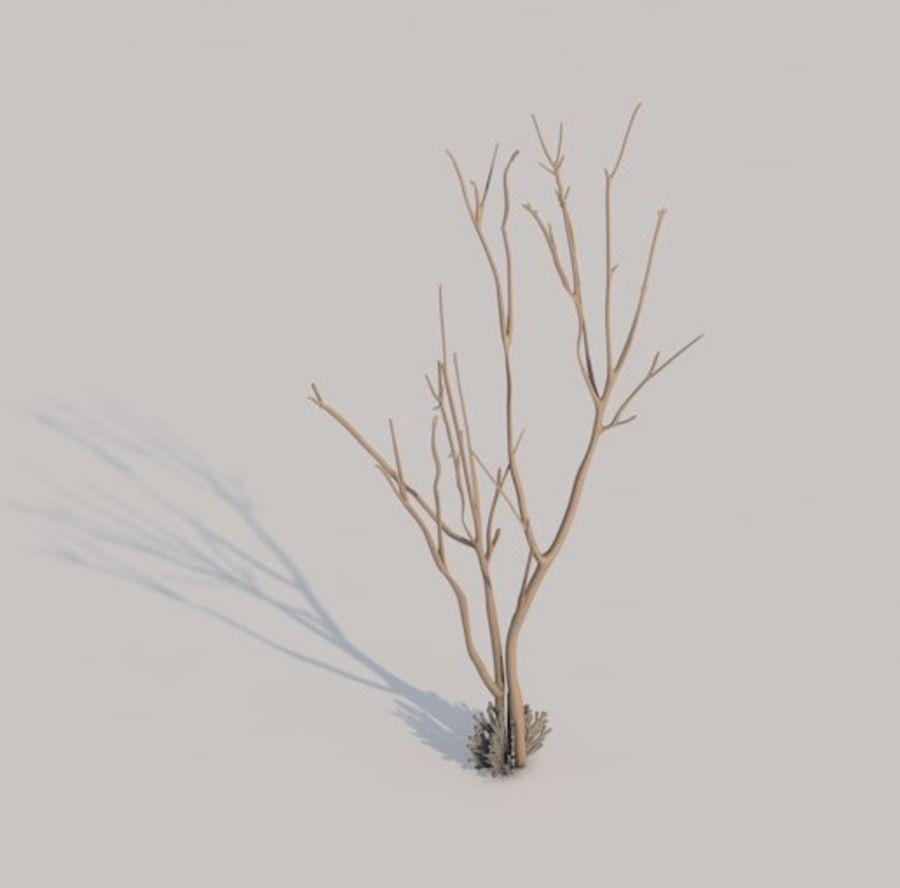 drzewo royalty-free 3d model - Preview no. 4