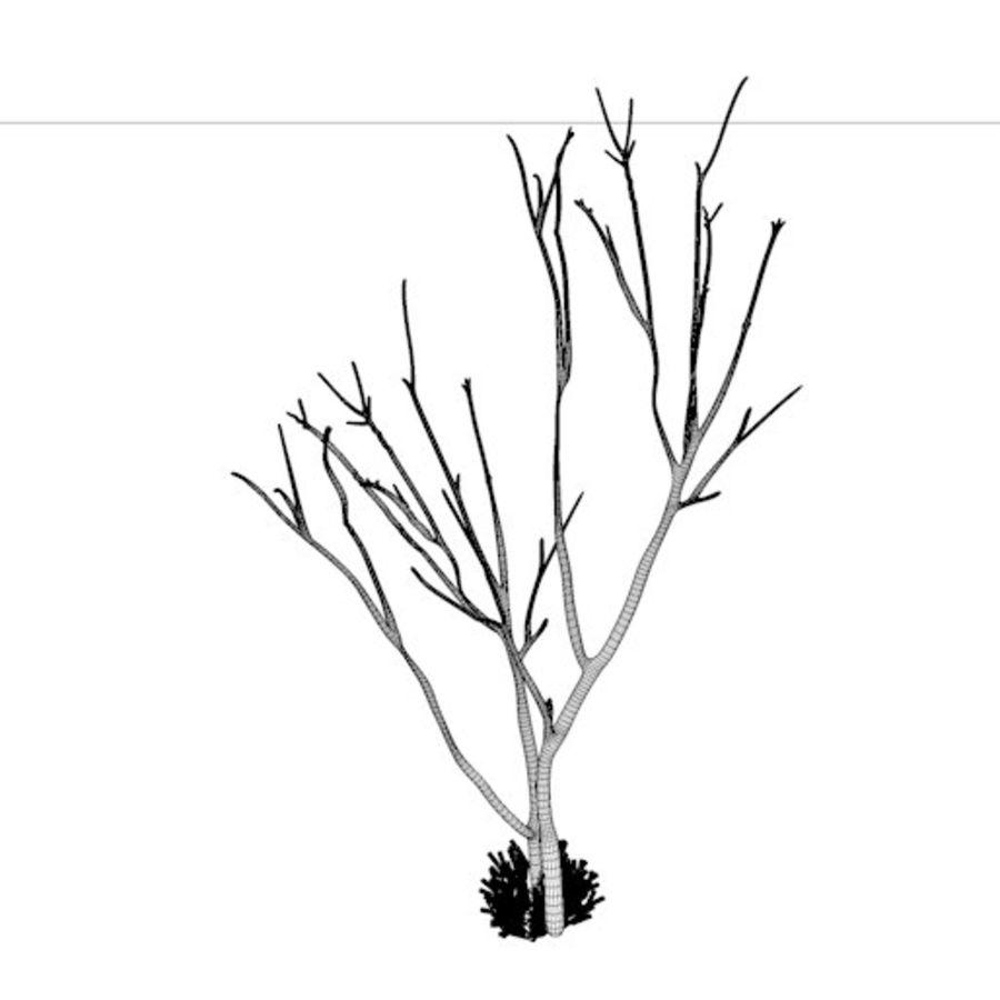 drzewo royalty-free 3d model - Preview no. 2