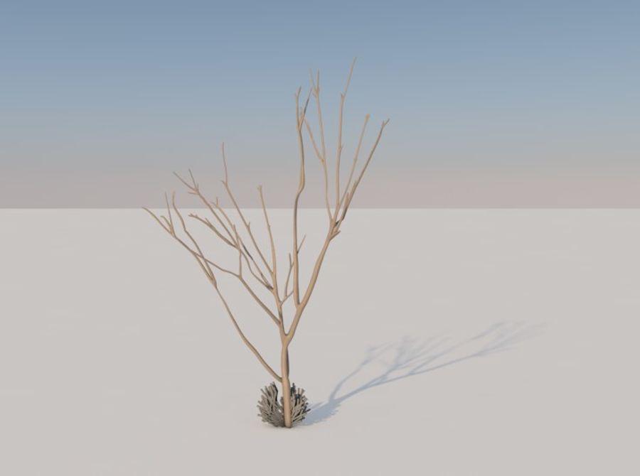 drzewo royalty-free 3d model - Preview no. 5