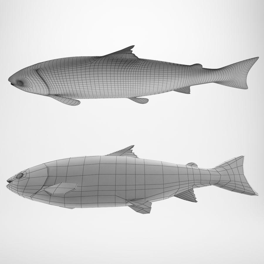 Truta de salmão royalty-free 3d model - Preview no. 5