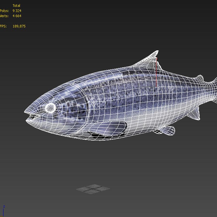 Truta de salmão royalty-free 3d model - Preview no. 6