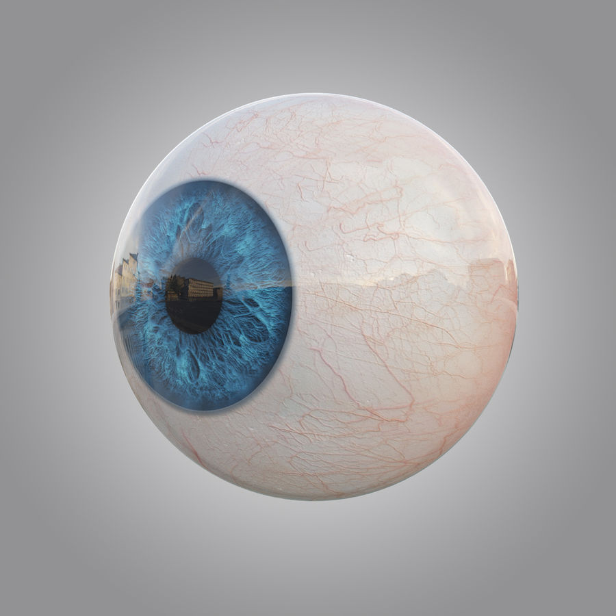 Human blue eye royalty-free 3d model - Preview no. 1