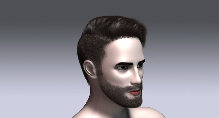 Virtual Hair 15 3d Model 6 X Free3d