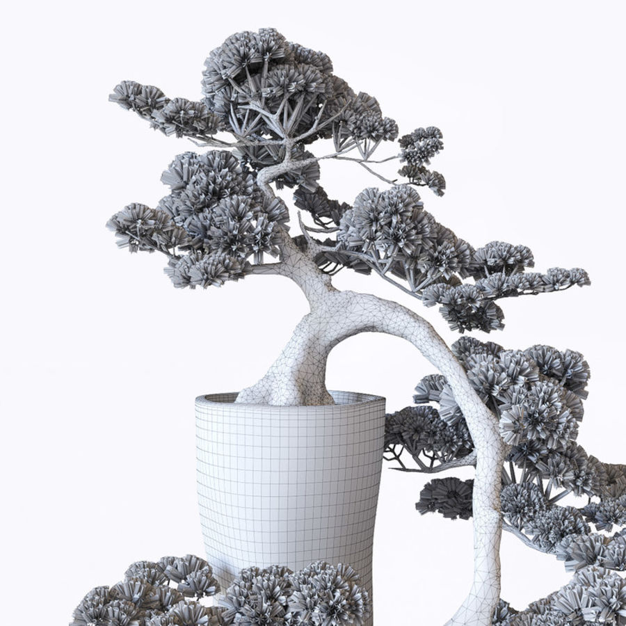 Bonsai royalty-free 3d model - Preview no. 7