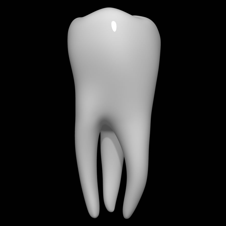 Tooth molar royalty-free 3d model - Preview no. 4