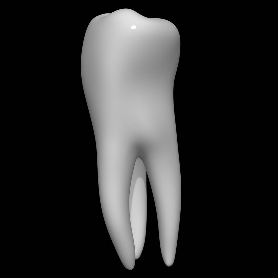 Tooth molar royalty-free 3d model - Preview no. 5