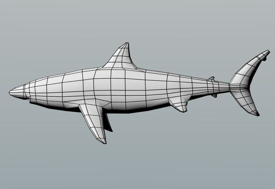 Shark Low Poly royalty-free 3d model - Preview no. 3