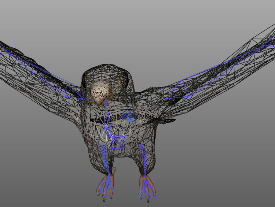 Falcon RIGGED royalty-free 3d model - Preview no. 4