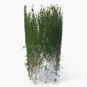 Ivy Column 3d model