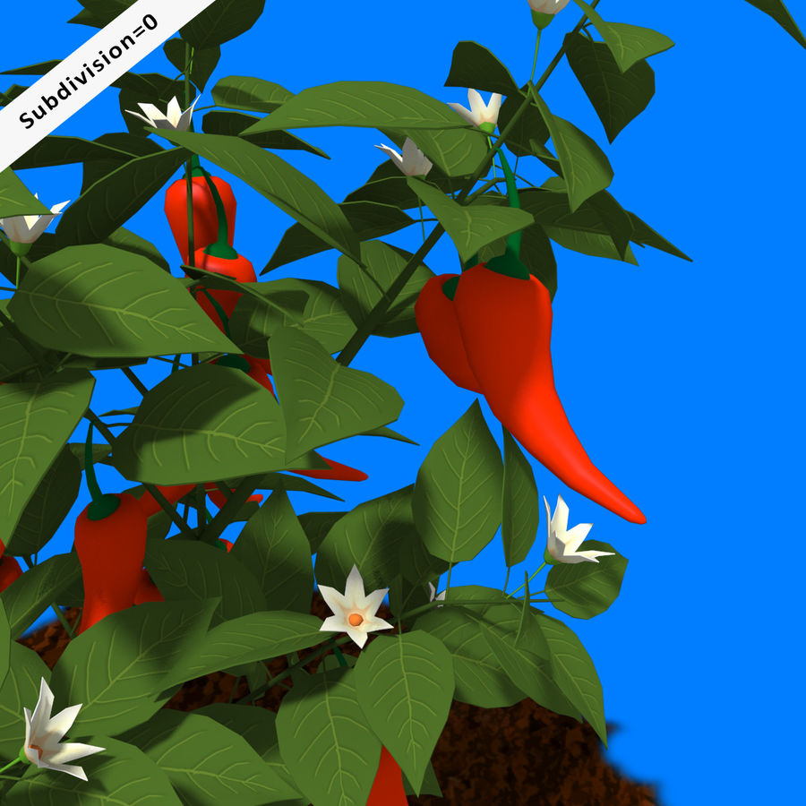 Pepper Plant royalty-free 3d model - Preview no. 5