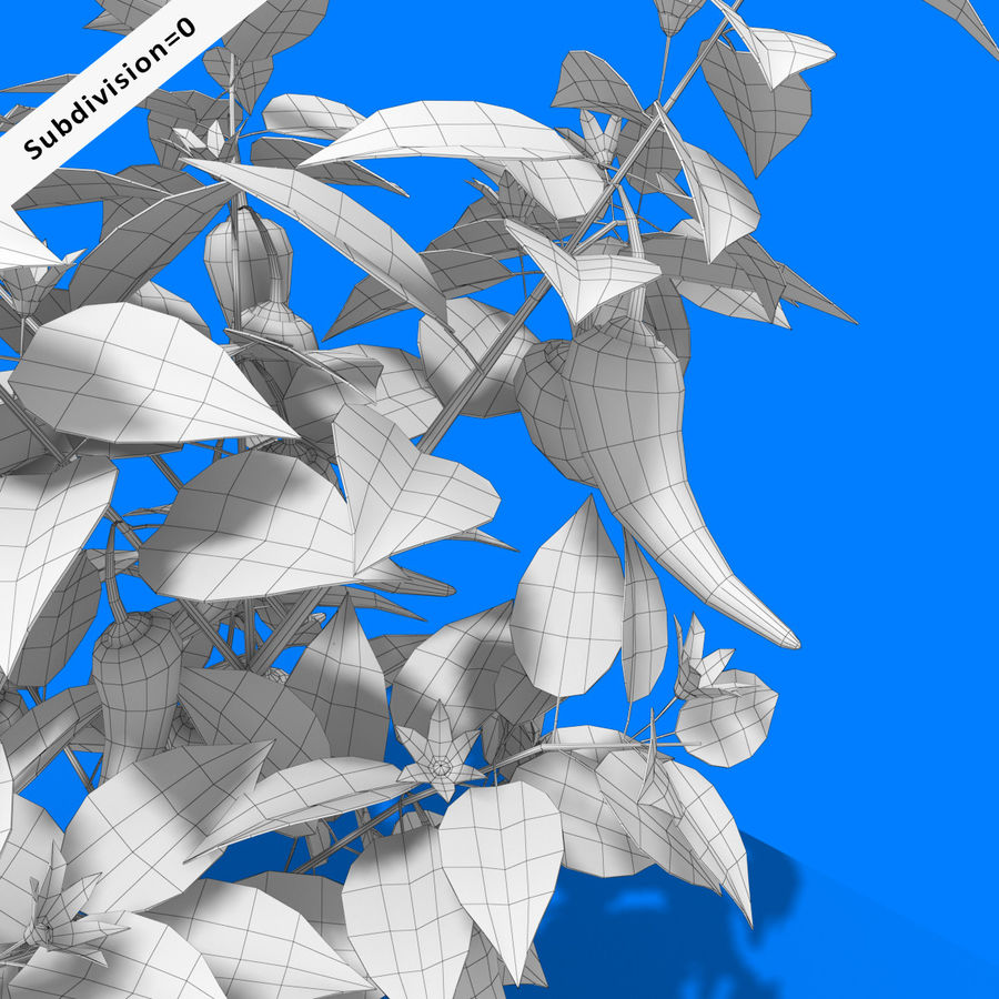 Pepper Plant royalty-free 3d model - Preview no. 11