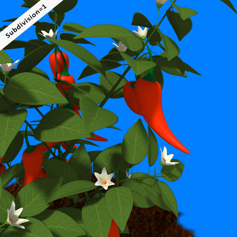 Pepper Plant royalty-free 3d model - Preview no. 6