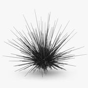 바다 Urchin 3d model