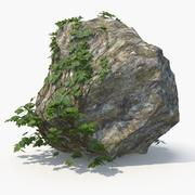 Ivy with Rock 02 3d model