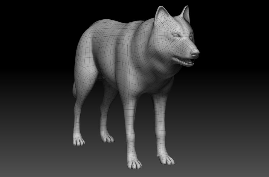 Wolf Base Mesh royalty-free 3d model - Preview no. 5