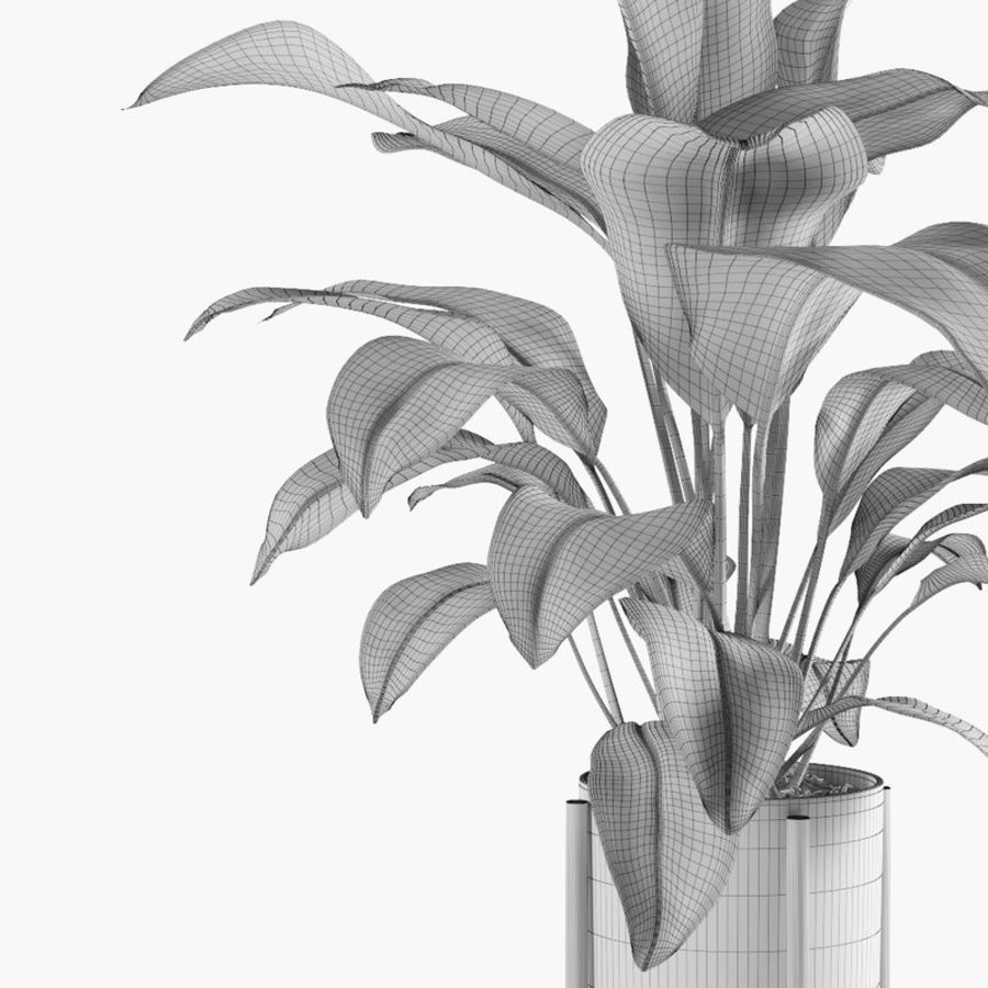Plant royalty-free 3d model - Preview no. 8