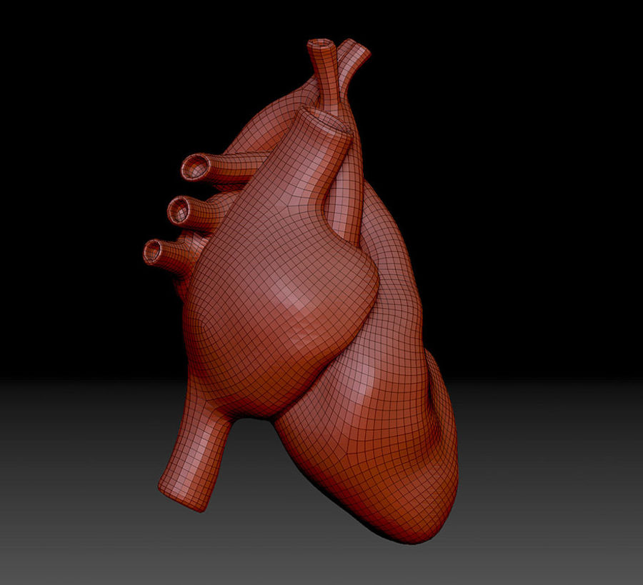 Heart Mesh royalty-free 3d model - Preview no. 8