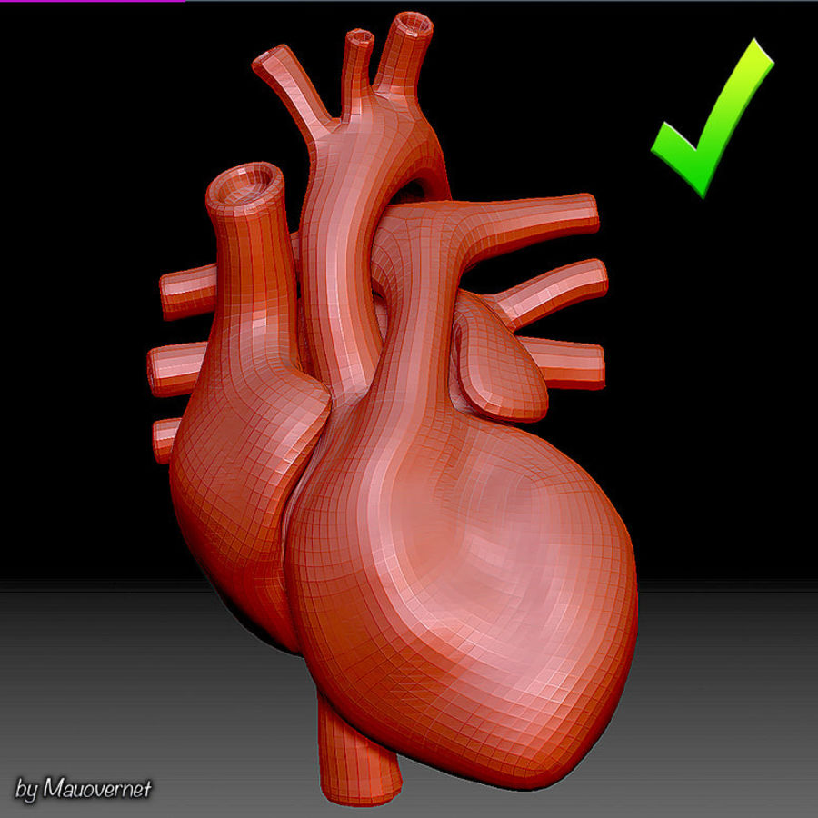 Heart Mesh royalty-free 3d model - Preview no. 1