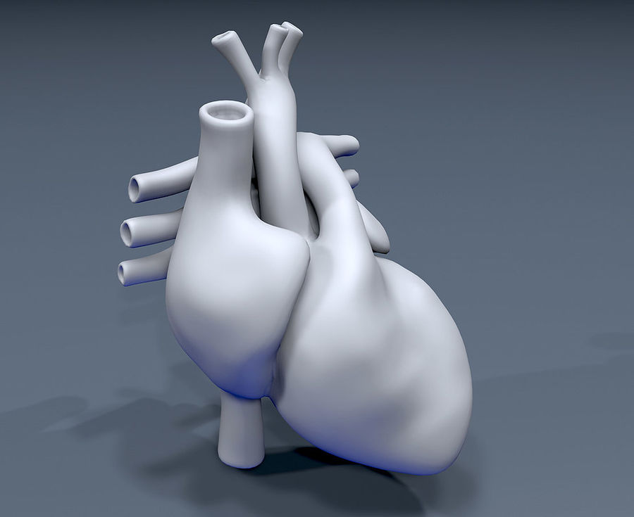 Heart Mesh royalty-free 3d model - Preview no. 2