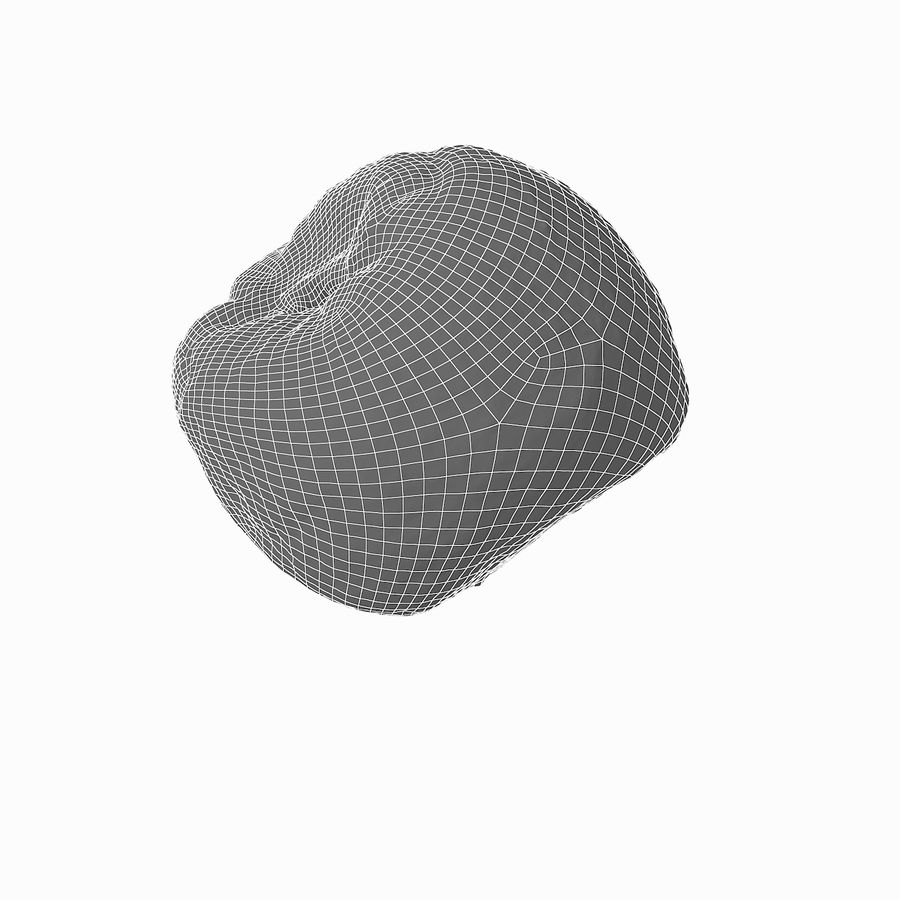 Rotten Rotte Apricot 03 royalty-free 3d model - Preview no. 30