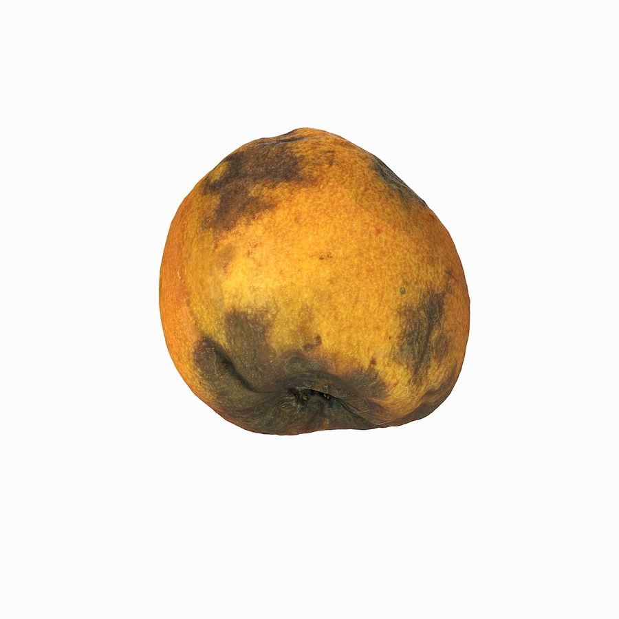 Rotten Rotte Apricot 03 royalty-free 3d model - Preview no. 13