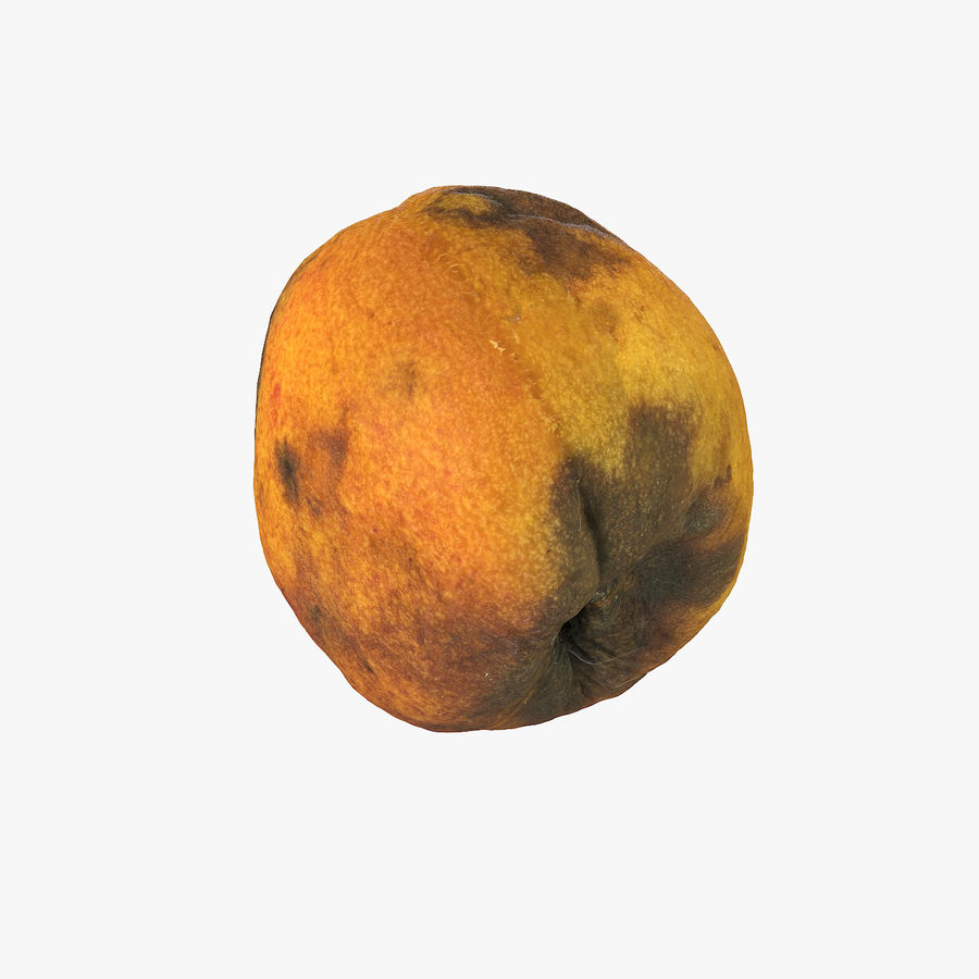 Rotten Rotte Apricot 03 royalty-free 3d model - Preview no. 1