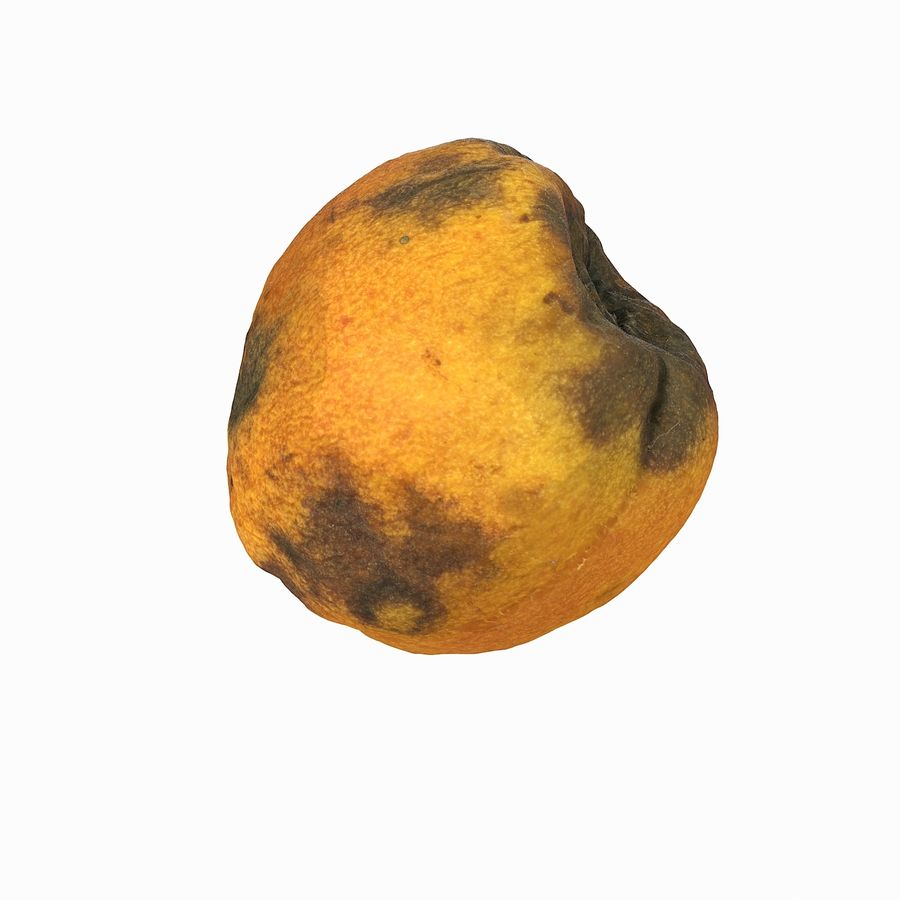 Rotten Rotte Apricot 03 royalty-free 3d model - Preview no. 26