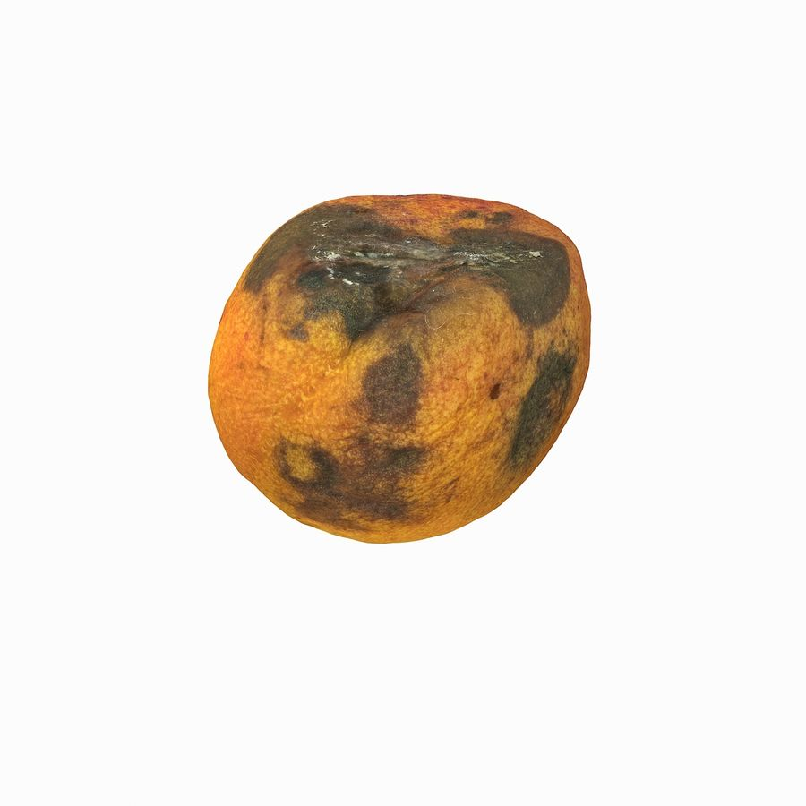 Rotten Rotte Apricot 03 royalty-free 3d model - Preview no. 8