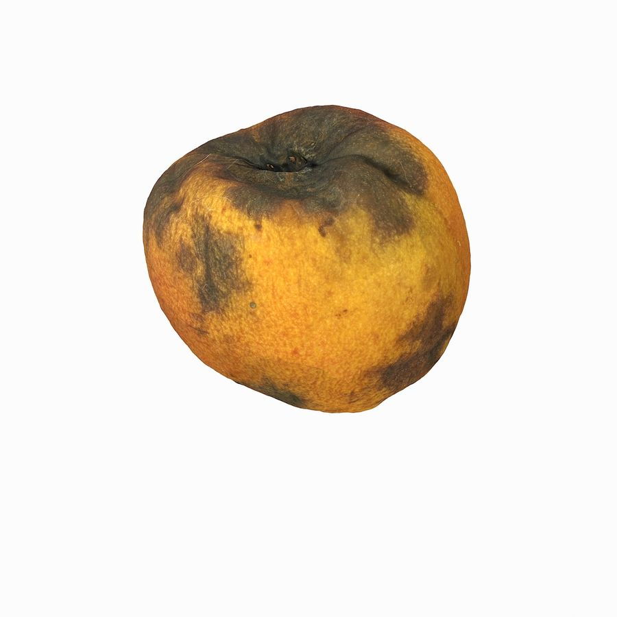 Rotten Rotte Apricot 03 royalty-free 3d model - Preview no. 10
