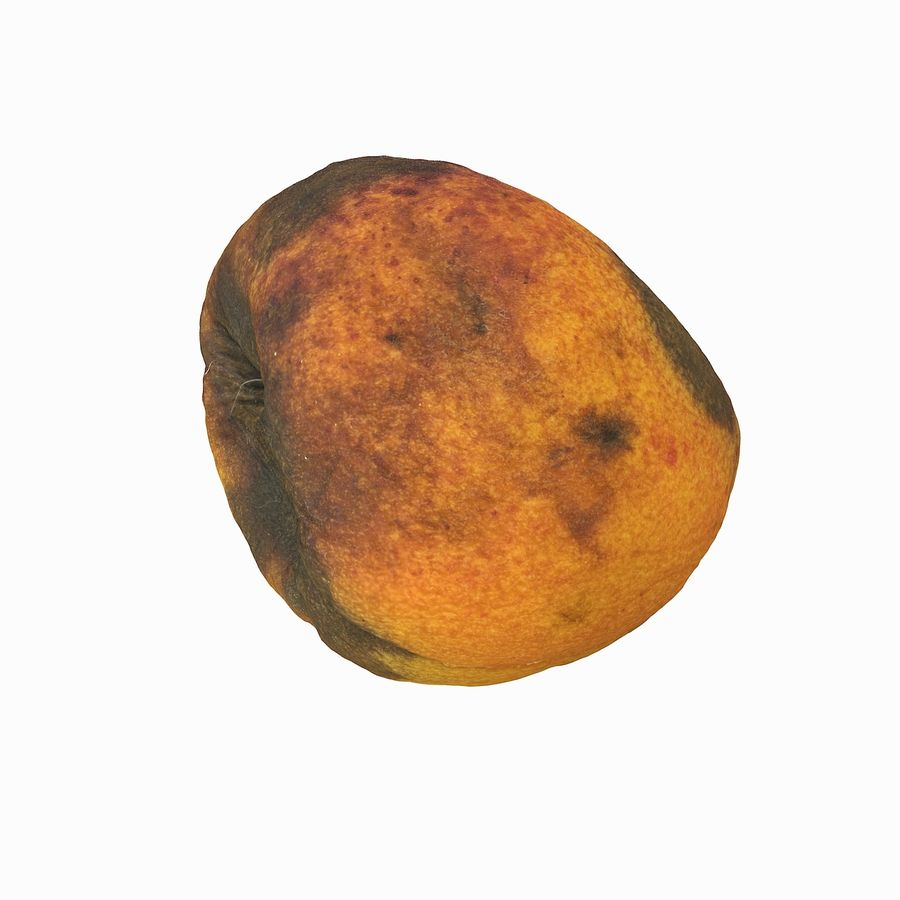 Rotten Rotte Apricot 03 royalty-free 3d model - Preview no. 9