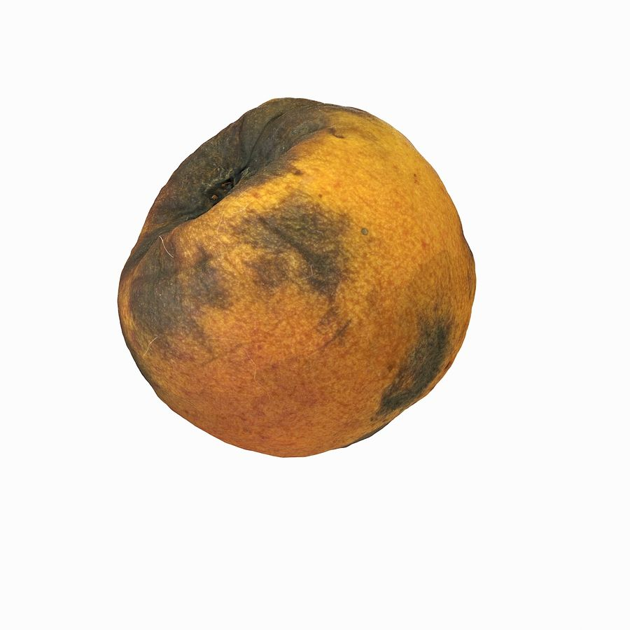Rotten Rotte Apricot 03 royalty-free 3d model - Preview no. 27