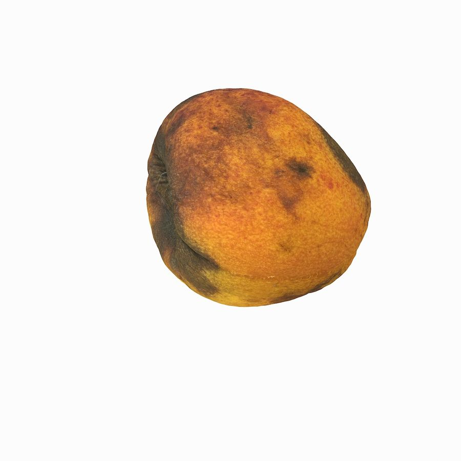 Rotten Rotte Apricot 03 royalty-free 3d model - Preview no. 19