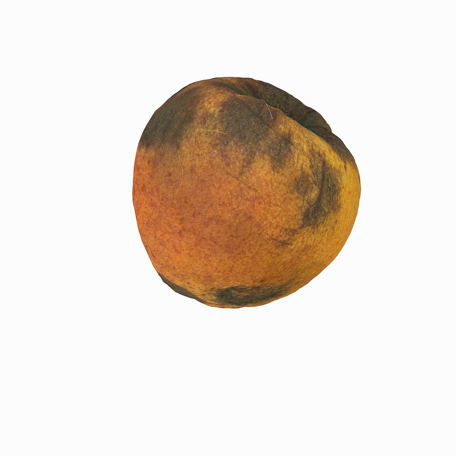 Rotten Rotte Apricot 03 royalty-free 3d model - Preview no. 11