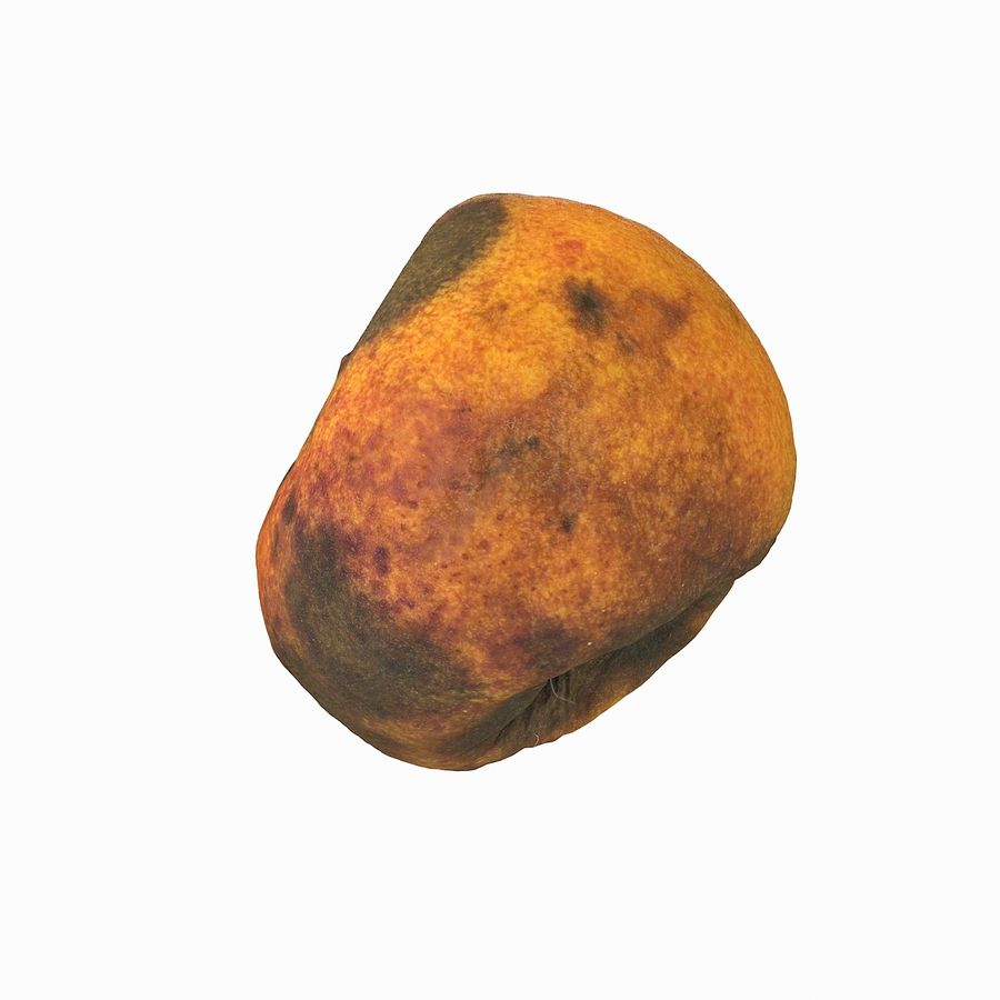 Rotten Rotte Apricot 03 royalty-free 3d model - Preview no. 23