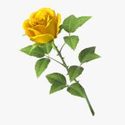 rose_v7_yellow 3d model