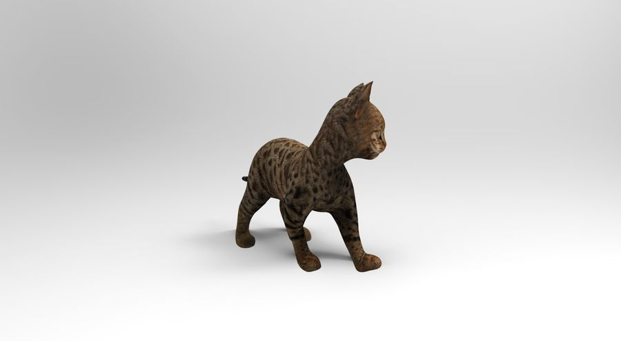 cute cat rigged royalty-free 3d model - Preview no. 6