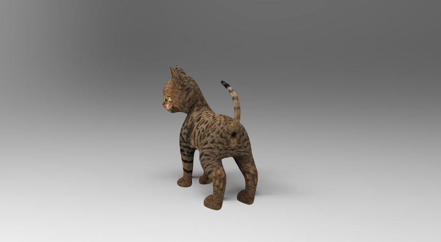 cute cat rigged royalty-free 3d model - Preview no. 11