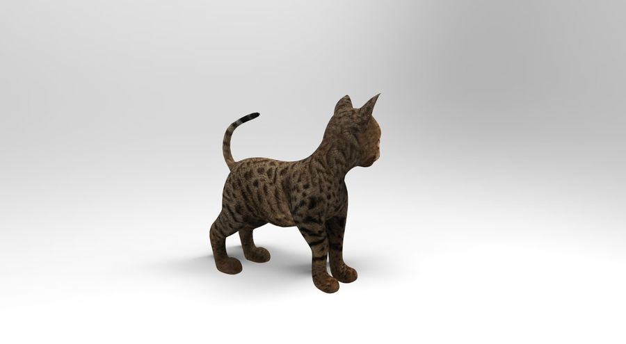 cute cat rigged royalty-free 3d model - Preview no. 13